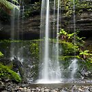 Lower Russell Falls, Mt Field, Tasmania by Odille Esmonde-Morgan