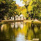 The Salmon Ponds, Plenty, Tasmania by Odille Esmonde-Morgan