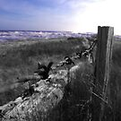 End of the fence by Lee Popowski