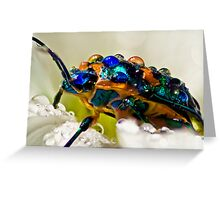 ...b'jewelled... Greeting Card