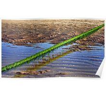 Seaweed line Poster