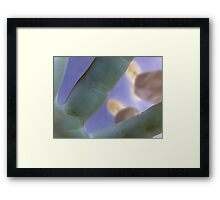 prints we leave Framed Print