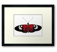The Red Postman Butterfly Framed Print