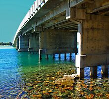 Forster tuncurry bridge by UncaDeej