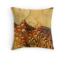 Feathers and Stone Throw Pillow