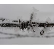 Barbed Wire Frosted Photographic Print