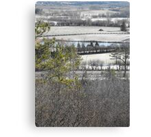 Frosted Over Canvas Print
