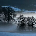 Panorama of Esthwaite in winter  by Simon Hathaway