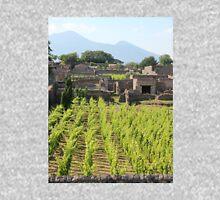 The Vineyards of Pompeii Unisex T-Shirt