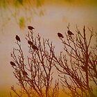 Flock Together by angelandspot