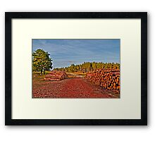 Colours of setting sun (HDR) Framed Print