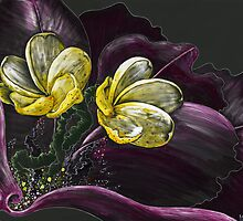 """""""Orchid For Angie"""" by Browan Lollar"""