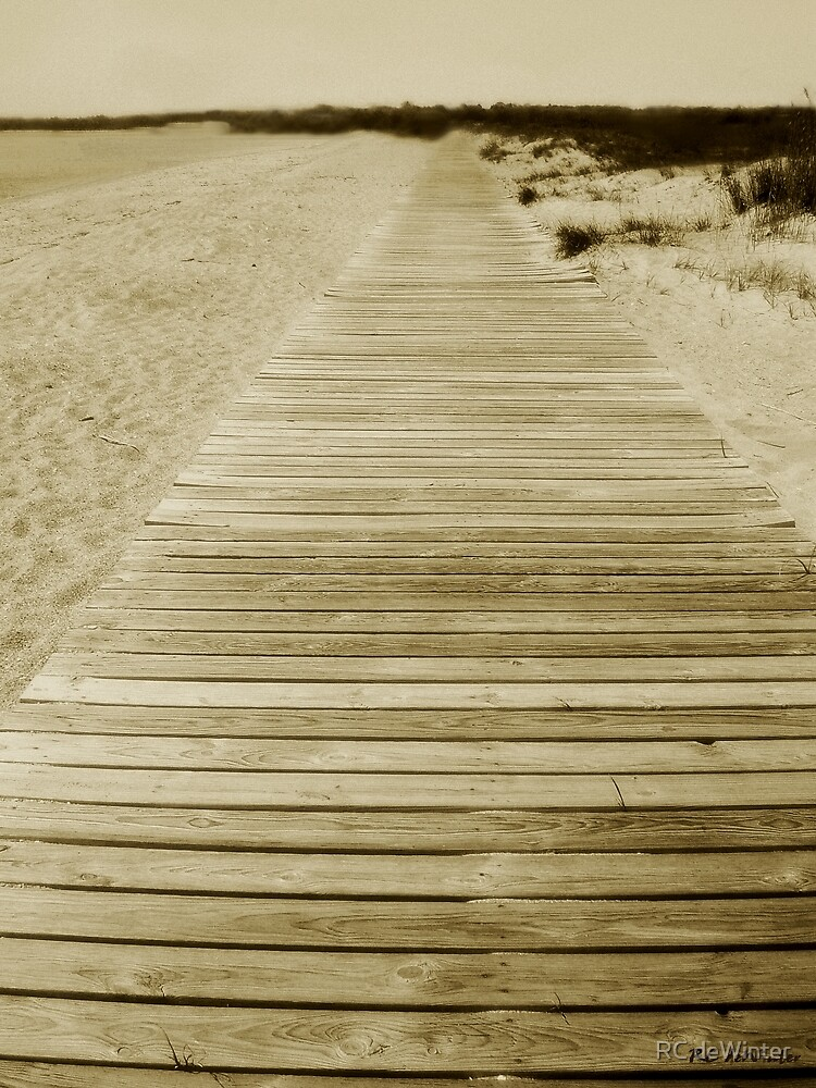 Walking into Forever by RC deWinter