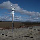 """""""Train Track & Plowed Field Patterns"""" by waddleudo"""