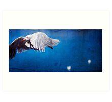 The Gull Art Print