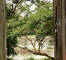 a large Cambodia landscape by beautifulscenes