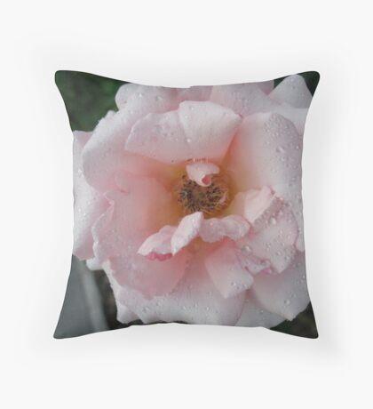 Sprinkled FairyDust Rose Throw Pillow