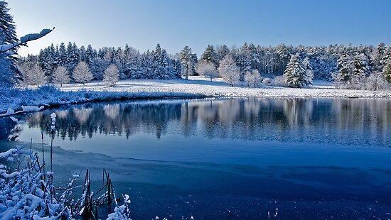Winter Lake Scene 2 by Edward Myers