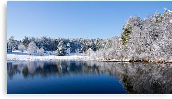 Winter Lake Scene by Edward Myers