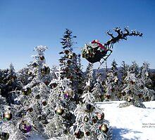 Ho Ho Ho from the Summit of Stinson Mt!   by maxy
