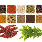Spices by AravindTeki