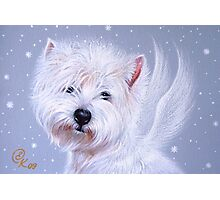 Winter Angel ( Westie) Photographic Print