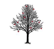 THE LOVE TREE Photographic Print