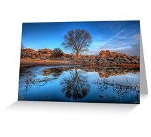 Rock Wall Tree Reflect Greeting Card
