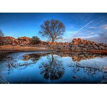 Rock Wall Tree Reflect Photographic Print