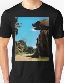 an unbelievable Somalia landscape T-Shirt