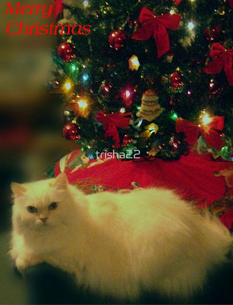 A CATS CHRISTMAS by trisha22