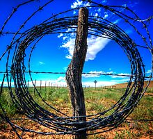 Circle Wire by Bob Larson