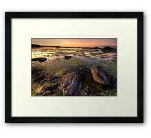Algae vs Rocks Framed Print