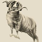 Antique Sheep by Patricia Howitt