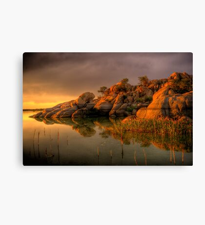 Willow Rock Canvas Print