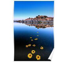 Sunflower Stretch Poster