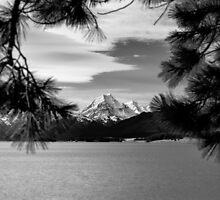 Vista over Lake Pukaki, New Zealand by Norman Repacholi