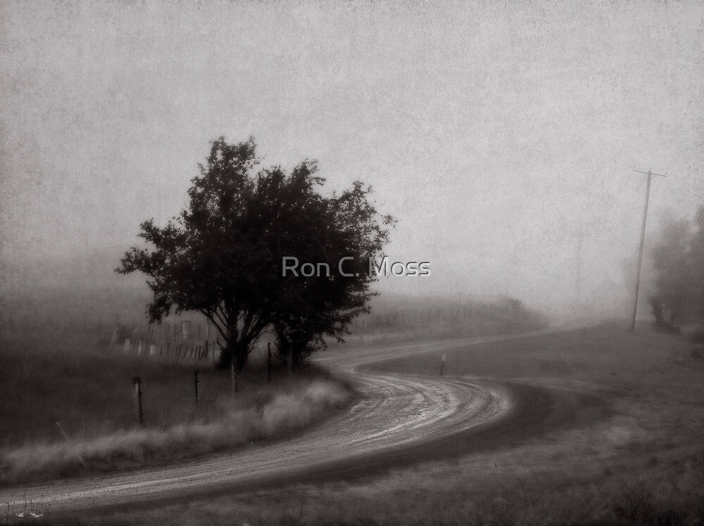 Lost Road by Ron C. Moss