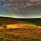 Landscape by Jessy Willemse