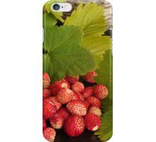 Wild berries iPhone Case/Skin