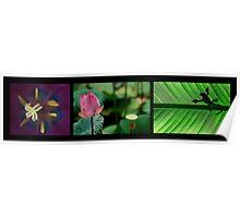 Tryptique fleur 1 Poster