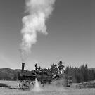Oldtime plowing by Jeff Ashworth & Pat DeLeenheer