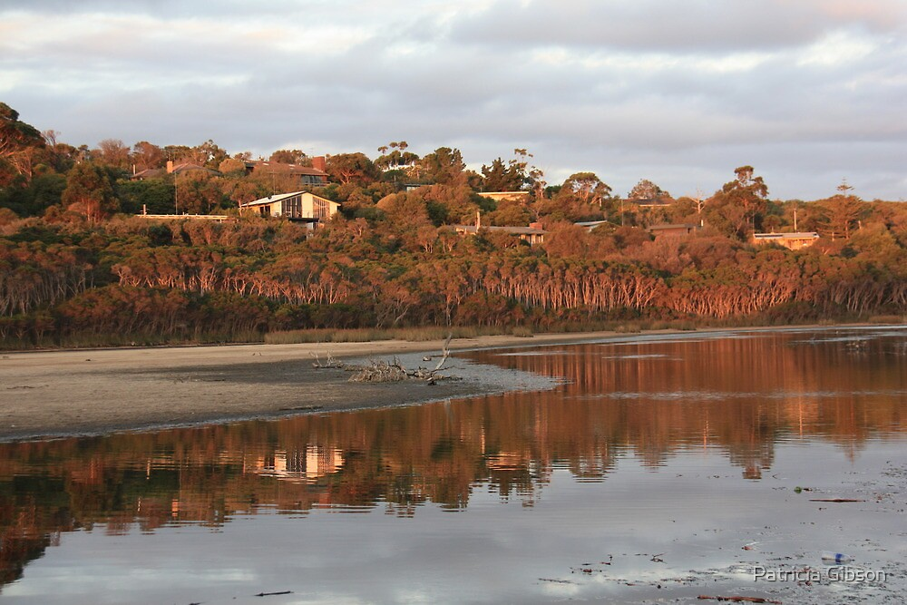 Balcombe Creek - Mt Martha, Vic by Patricia Gibson