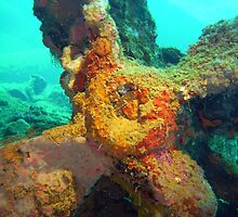 Torpedo in Gosei Maru, Truk Lagoon by Mark Box