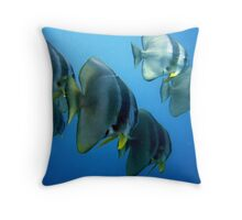 Batfish on HMAS Swan, Dunsborough WA Throw Pillow