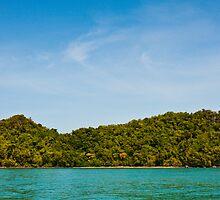 Tropical Island by Nickolay Stanev
