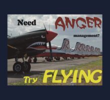 Need Anger Management? Try Flying. by muz2142