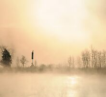 Sunrise on a foggy winter morning by Louise Fahy