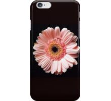 Pink and Black Beauty iPhone Case/Skin