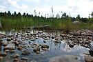 Greenleaf Pond by John Schneider